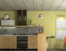 Кухня с пластиковыми потолками в стиле эко